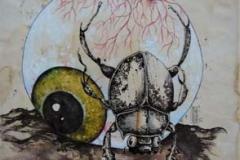 Stercorario con Occhio . 2011 . Penna, inchiostro, acquerello e olio su carta