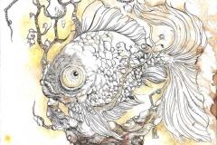 Pesce - 2012 - inchiostro e acquerello su carta