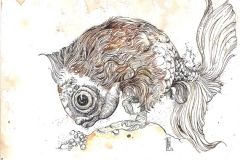 Pesceallo - 2012 - ichiostro su carta